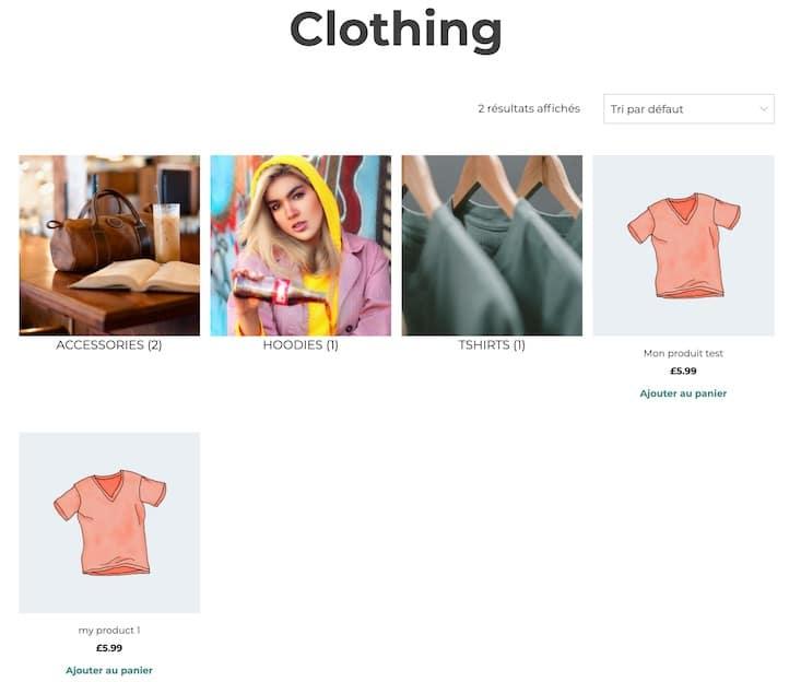 Exemple d'un affichage des sous-catégories et des produits