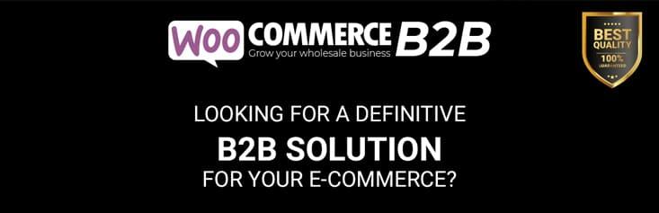 Woocommerce B2b solution e-commerce